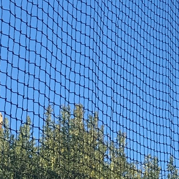 Cricket sports Barrier Nets Australia
